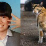 中込愛美さんのインスタを調査「捜索願が出されていなかった不審点と近所の猫の連続不審死との関係」